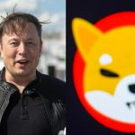 Shiba Inu Coin Jumps 65% After Elon Musk Tweets About His Dog